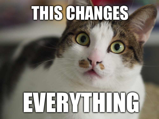 this change eveything cat